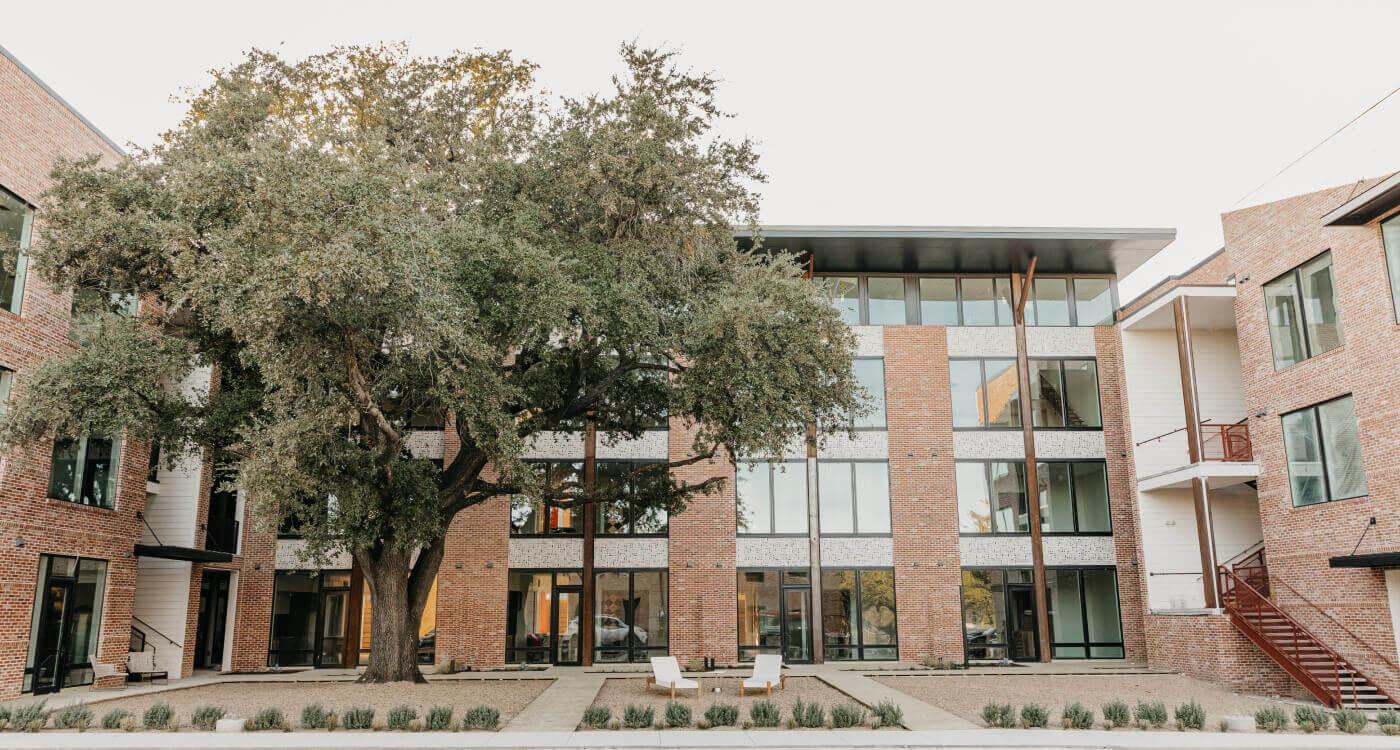 Image of Treehaus Apartments at Bishop Arts
